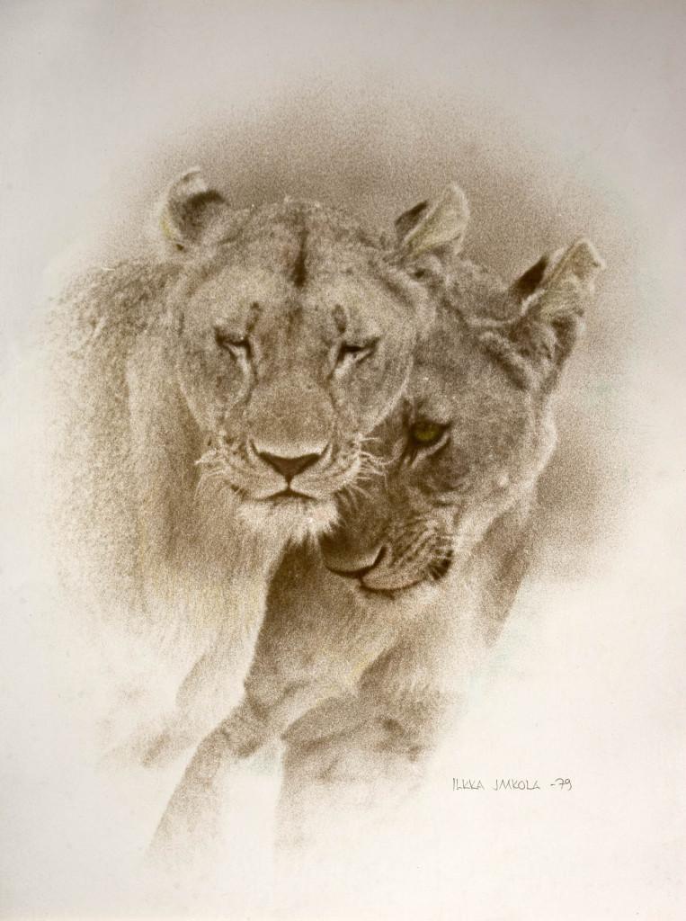 Kilimanjaron leijona sis ak